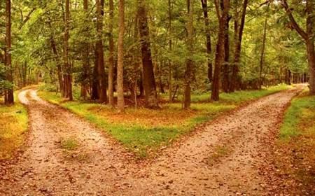 twin path 2